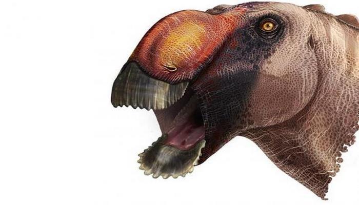 Палеонтологи нашли странного динозавра в Техасе