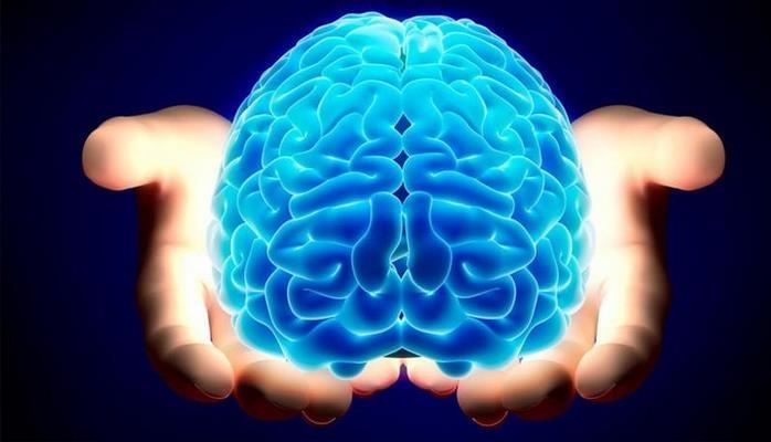 Beyninizin necə işlədiyini bilirsiniz?