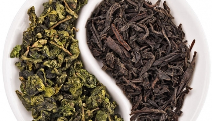 Hansı çay daha faydalıdır - yaşıl yoxsa qara?