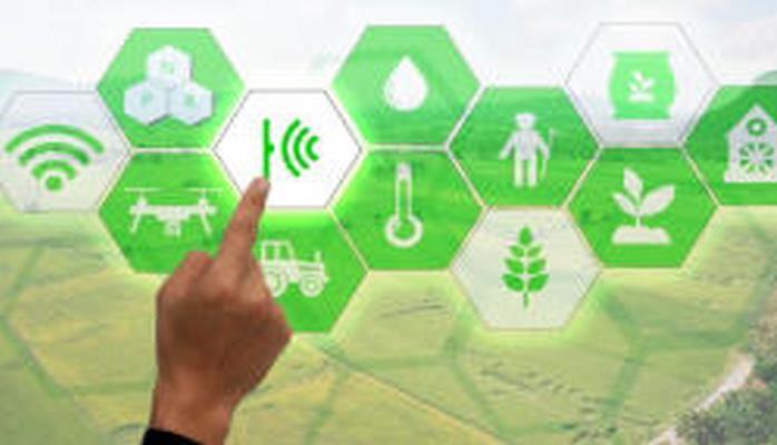 В Азербайджане начат процесс внедрения электронных услуг в сфере сельского хозяйства