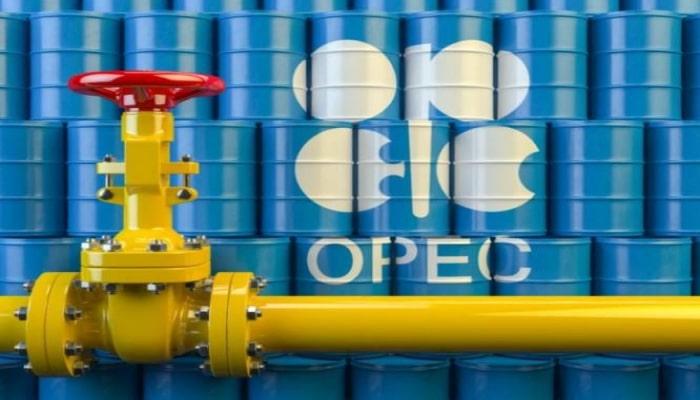 """""""OPEC+"""" ölkələrinin virtual iclası başlayıb"""