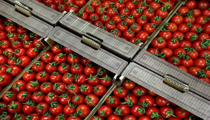 Азербайджан продал помидоров почти на 150 миллионов
