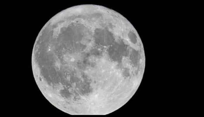 Ayın mənşəyi haqqında yeni iddia