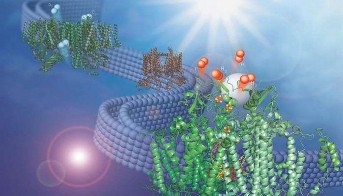 Ученые научились получать водородное топливо из воды с помощью света