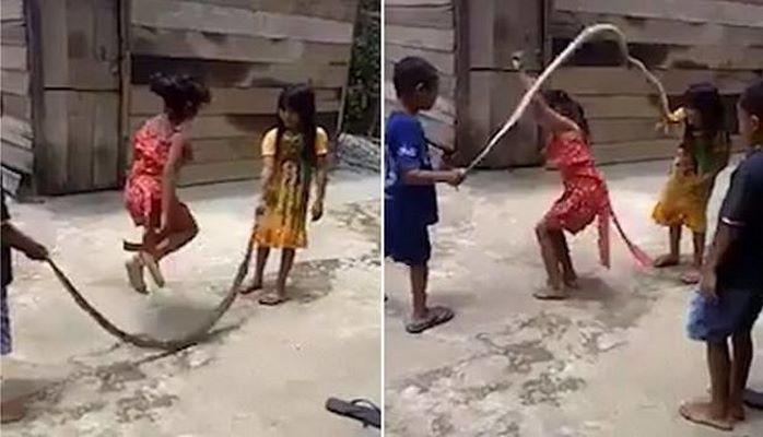 Дети использовали мертвую змею вместо скакалки
