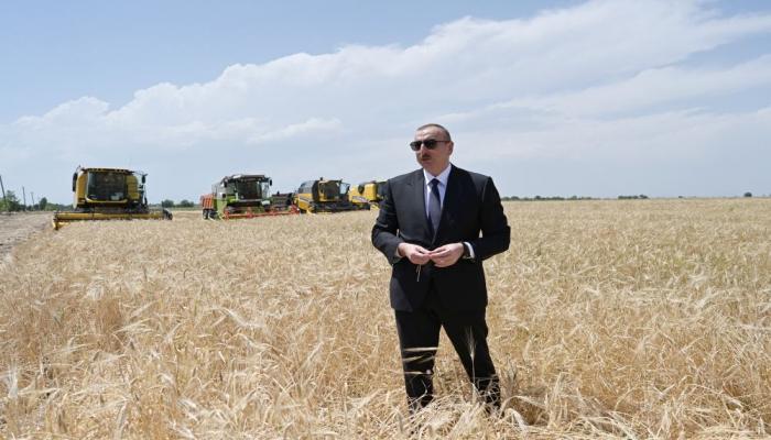 Президент Ильхам Алиев в Агджабеди принял участие в церемонии начала сбора урожая зерновых