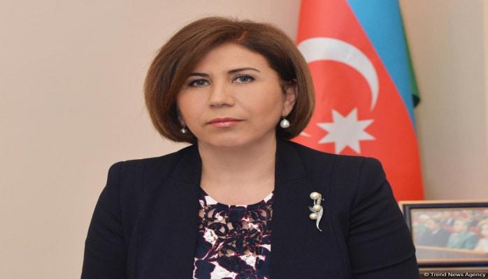 Вице-спикер парламента Азербайджана о некоторых вопросах в связи со статусом вынужденных переселенцев