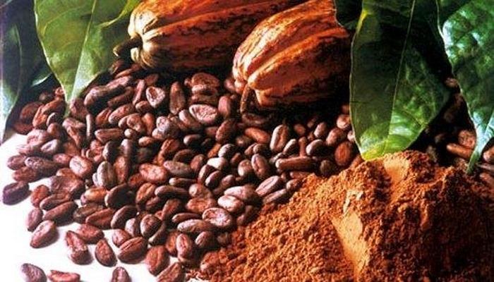 Ürəyin dostu - Kakao