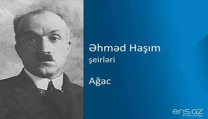 Əhməd Haşım - Ağac