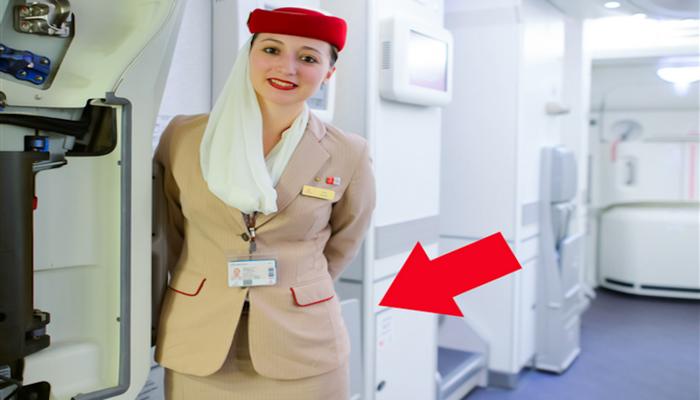 Что прячут стюардессы за спиной при посадке пассажиров?