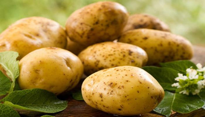 Азербайджан экспортирует картофель в восемь стран
