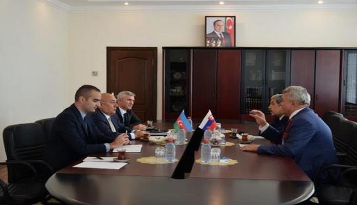Slovakiya- Azərbaycan parlamentlərarası dostluq qrupunun rəhbəri MSN-də olub