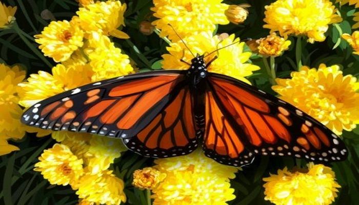 Эксперты предупреждают: исчезновение насекомых может быть катастрофическим для людей
