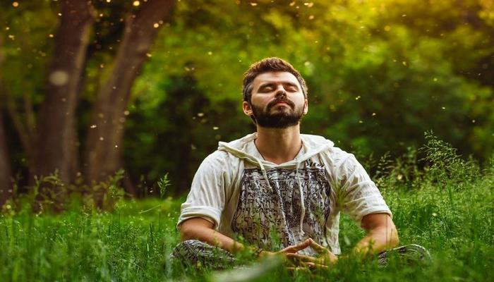Ученые выяснили, сколько времени нужно проводить на природе