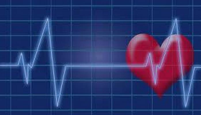 Ученые: Пульс влияет на продолжительность жизни человека