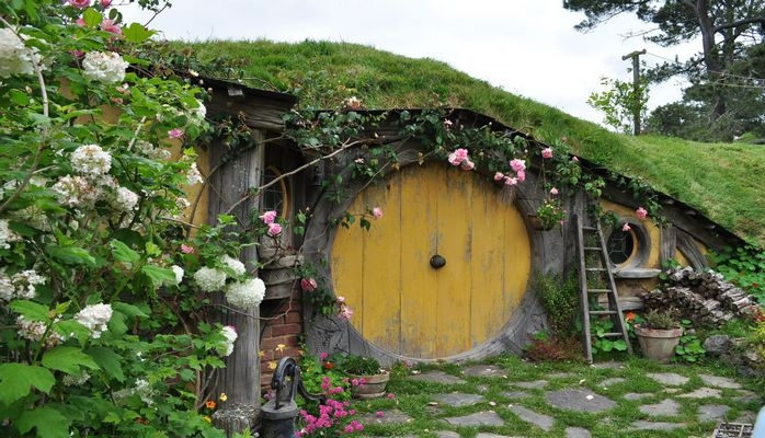 В Нидерландах открылся «приют» для садовых растений