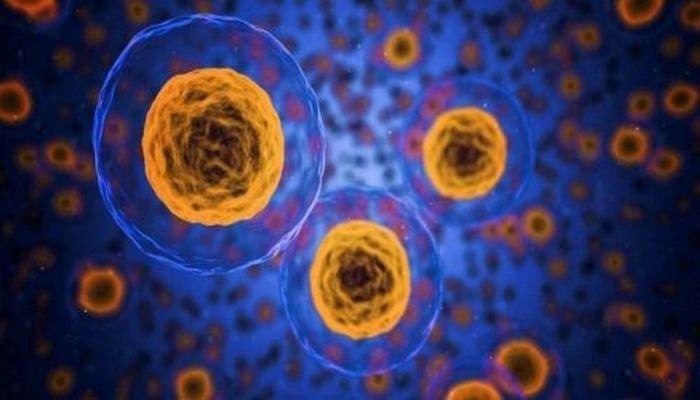 Учёные разработали новый метод для ранней диагностики рака