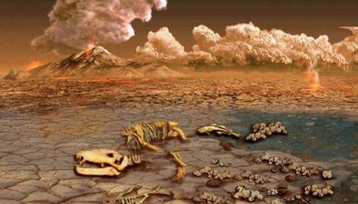 Новые данные: вулканы вызвали наибольшее массовое вымирание