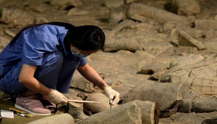 Учёные обнаружили на востоке Китая артефакт, относящийся к традиционной медицине