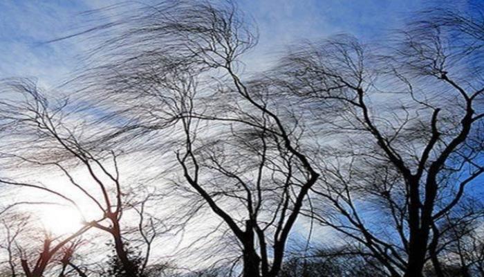 Сильный ветер нанес серьезный ущерб энергохозяйству районов Азербайджана