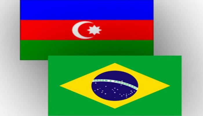 Azərbaycanla Braziliya arasında 11 sənəd imzalanacaq