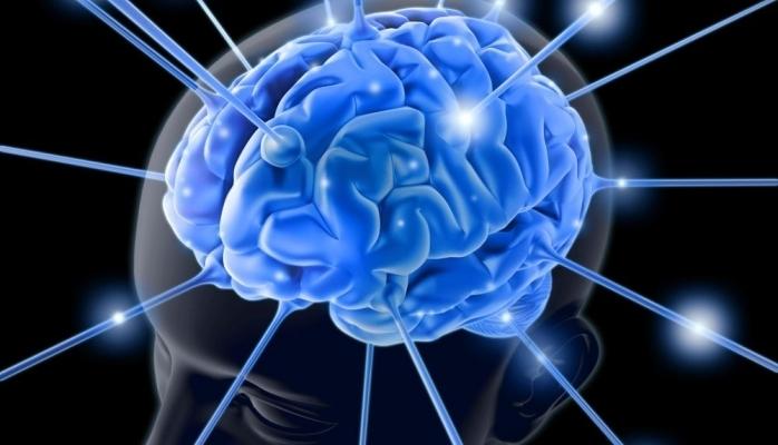 İnsan beynin yarısı olmadan da rahat yaşaya bilər