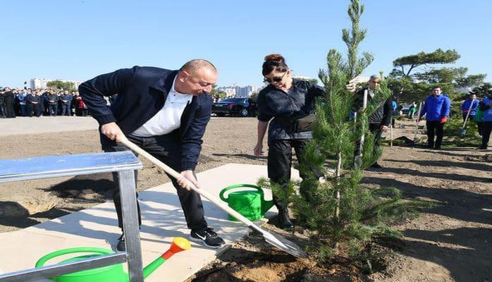 Ильхам Алиев и Мехрибан Алиева посадили деревья
