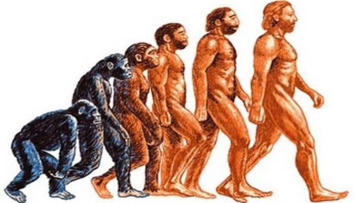 Ученые сделали сенсационное открытие о происхождении человека