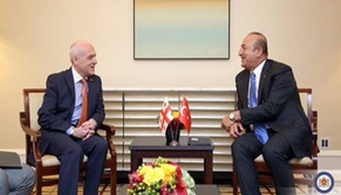 Главы МИД Грузии и Турции обсудили региональные проекты