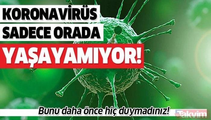 Bunu daha önce hiç duymadınız! İşte koronavirüsün yaşayamadığı tek yüzey!