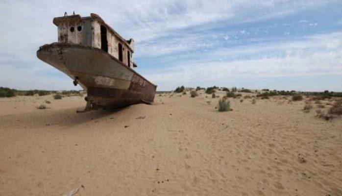 Quruyan Aral gölü meşəyə çevirilir