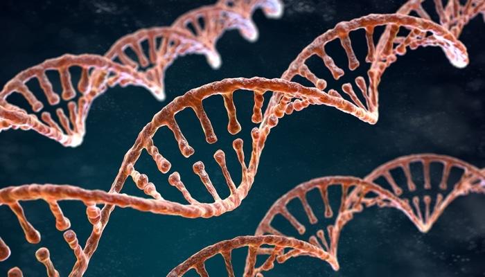 Çin şirkəti cəmi 100 dollara insan genomunu sıraladı