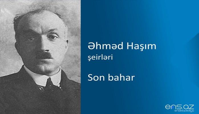 Əhməd Haşım - Son bahar