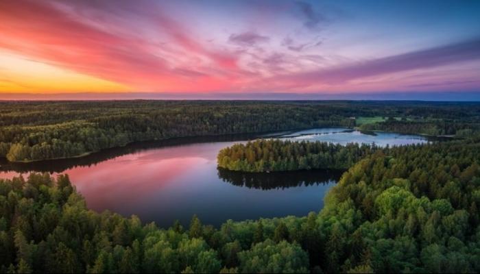 Финляндия названа лучшим туристическим направлением в Глобальном индексе для путешествий по дикой природе за 2019 год