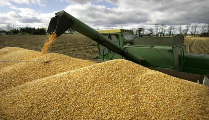 Россия продаст до 1,5 млн тонн зерна из госфонда