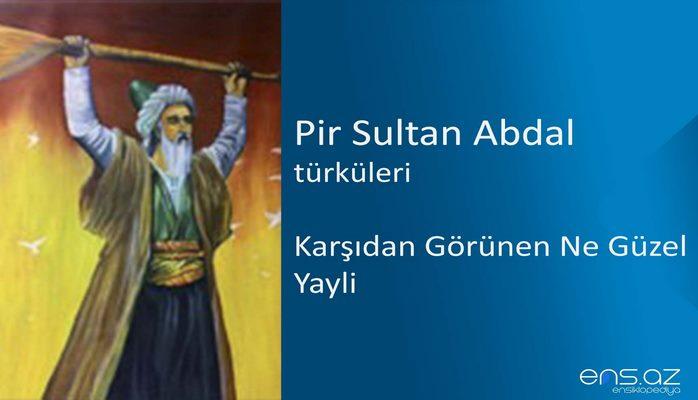Pir Sultan Abdal - Karşıdan Görünen Ne Güzel Yayli