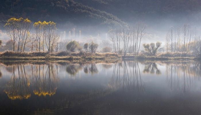 En iyi orman fotoğrafı Manisalı öğretmenin objektifinden