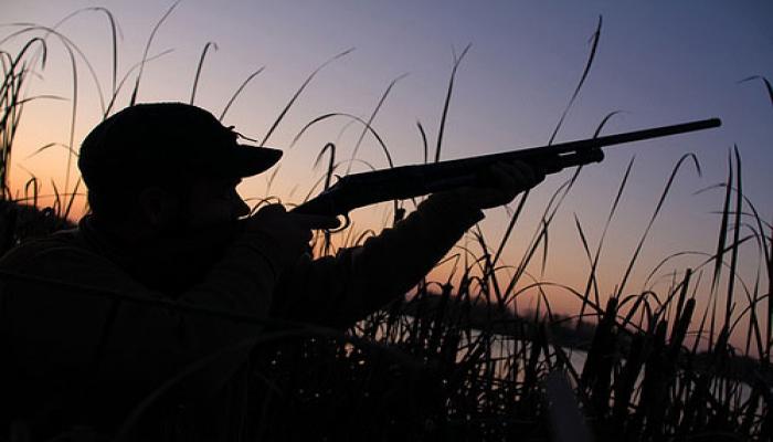 Минэкологии Азербайджана планирует многократно увеличить штрафы за браконьерство