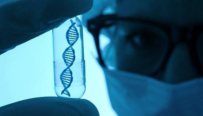 Российские биологи раскрыли истинную причину развития атеросклероза