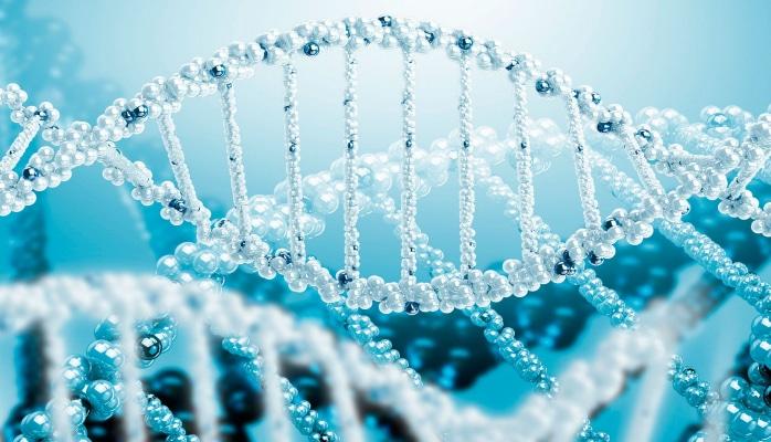 Решена многолетняя загадка ДНК