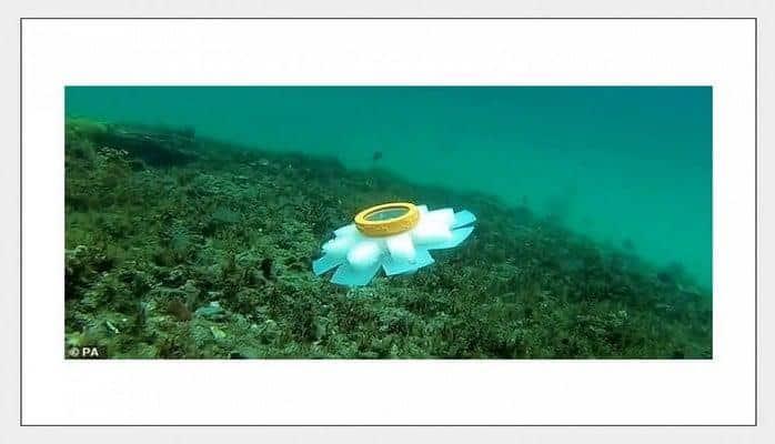 Роботы-медузы помогут морским биологам