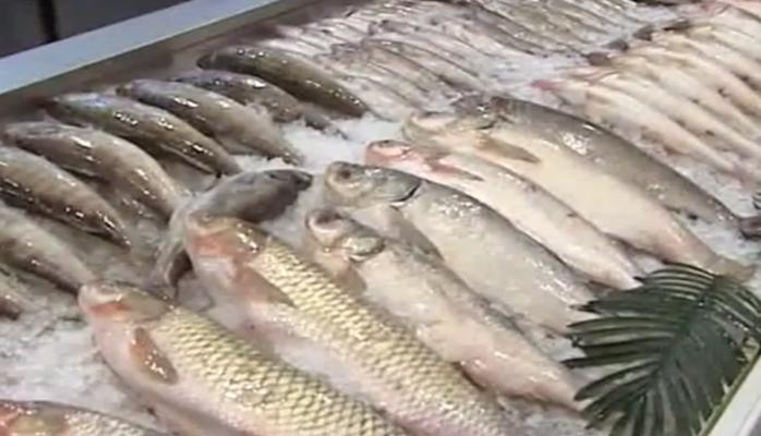 Mövsüm dəyişikliyi balıq bazarına necə təsir edib?