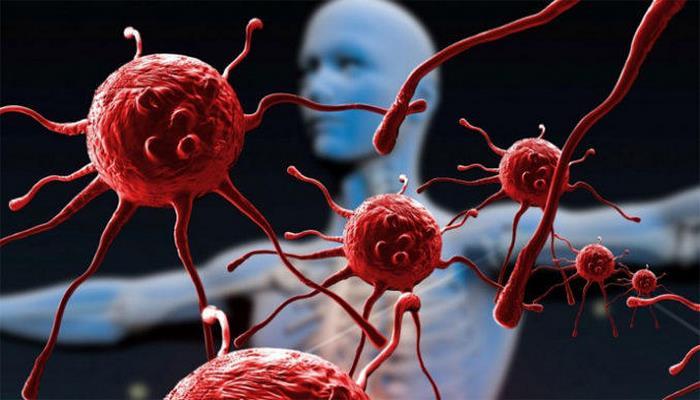 """Раскрыты """"убежища"""" возбудителей СПИДа в организме человека"""
