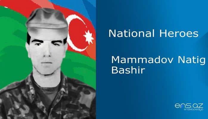 Mammadov Natig Bashir