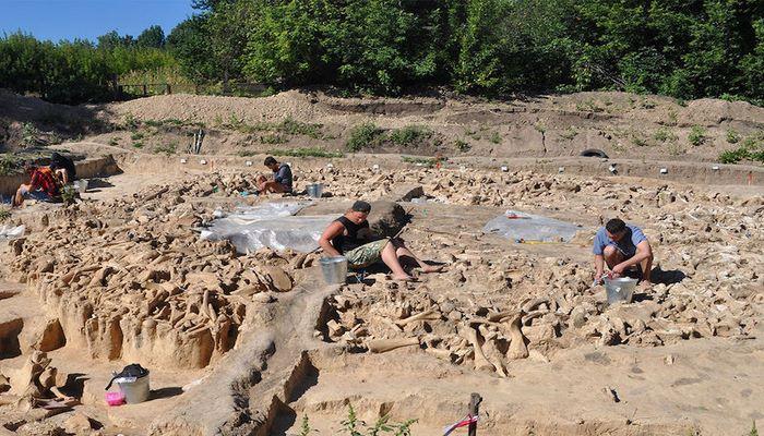 Mamut Kemiklerinden Yapılmış 25.000 Yıllık Yapı Bulundu