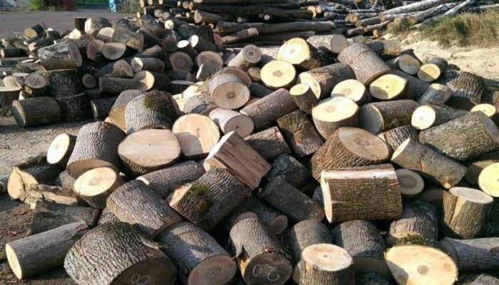 Nazirlik odun tədarük edilə biləcək yerləri açıqladı