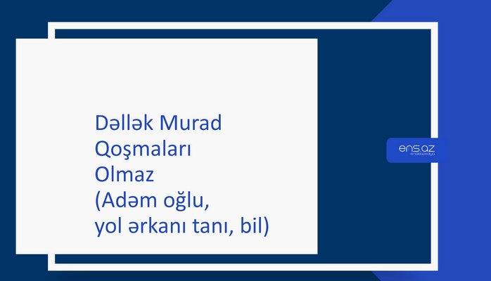 Dəllək Murad - Olmaz (Adəm oğlu, yol ərkanı tanı, bil)