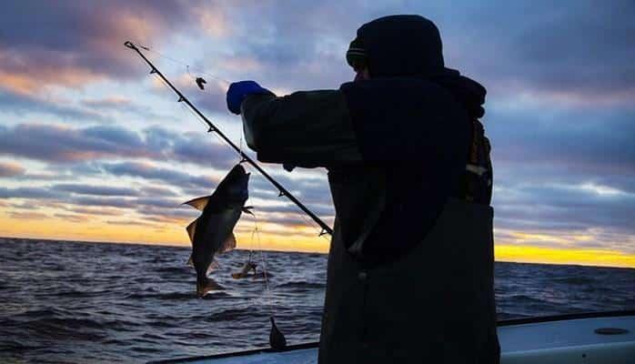 Мероприятия с целью предотвращения незаконной ловли рыб продолжаются