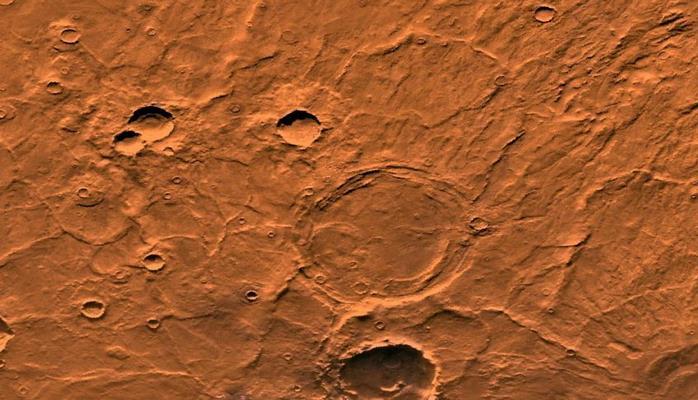 Ученый объяснил способ доставки живых организмов с Земли на Марс