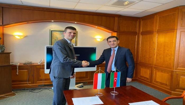 Азербайджан и Венгрия начали сотрудничество по энергетике